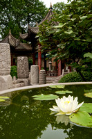 Phoenix Pavillion and Water Lily, Xi'an Great Mosque