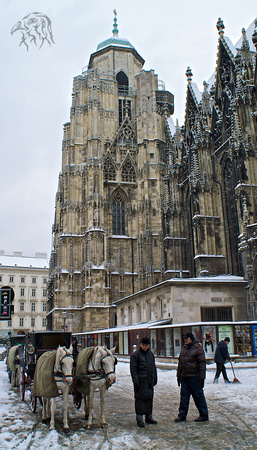 St. Stephen's Cathedral with horse and carriage, Vienna