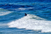 Surfer, Merewether, Newcastle