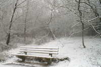 Bench, Devil's Punchbowl in the snow, Surrey