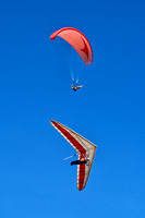 Paraglider and Hanglider, Merewether, Newcastle 1