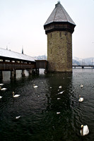 Octagonal Water Tower and Swans, Lucerne