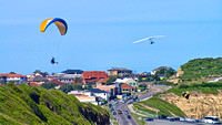 Paraglider and Hanglider, Merewether, Newcastle 2