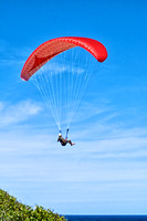 Paraglider, Merewether, Newcastle 2